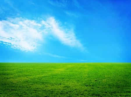 크림 자연 배경, 잔디와 하늘 스톡 콘텐츠