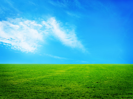 green hills: nature background, grass and sky in Crimea