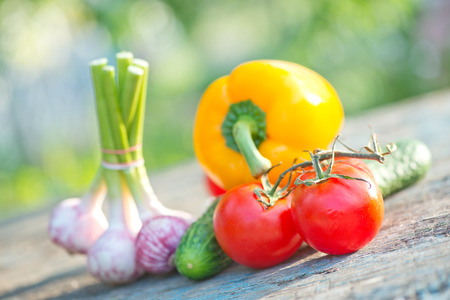 raw vegetables on a table in the garden photo
