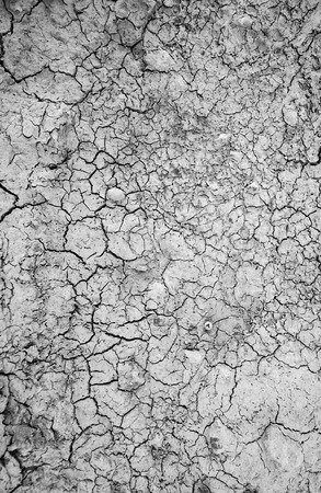 fissure: Surface of a grungy dry cracking parched earth