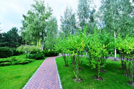 garish: summer park in Ukraine, beautiful green park Stock Photo