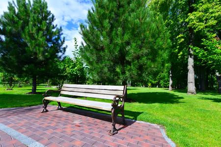 warm weather: summer park, warm weather in city park