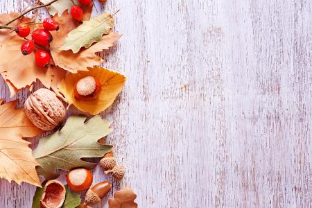 arboles frutales: Fondo del otoño, nueces y hojas del otoño en una mesa Foto de archivo