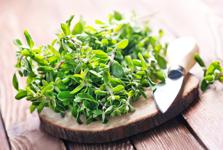 fresh aroma herb,marjoram on a wooden rustic table Stock Photo
