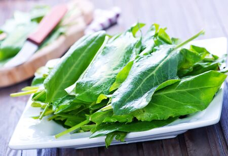 sorrel: fresh sorrel on board and on a table Stock Photo