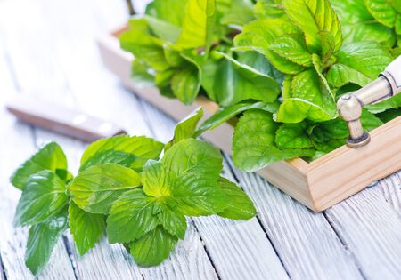 fresh mint and knife on the white table Stock Photo
