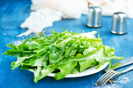 fresh ruccola on white plate and on a table
