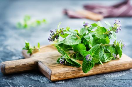 Herbe aromatique à bord et sur une table Banque d'images - 81362803