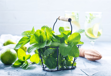 ingredients for mojito on a table, stock photo Stock fotó - 83874999