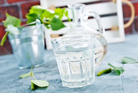 birch tree juice in glass, stock photo