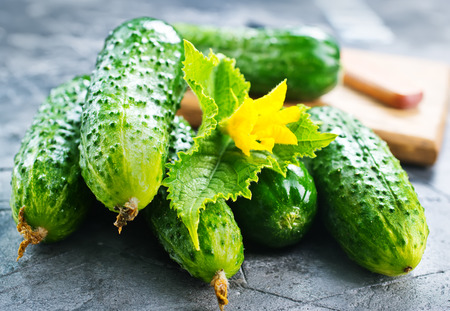 cucumis sativus: fresh cucumbers on the wooden table, stock photo