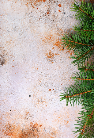 christmas background, green branch on a table