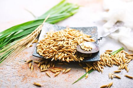 natural oat grains on metal plate Stock Photo