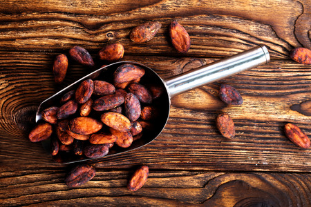 cocoa beans on a table Stok Fotoğraf