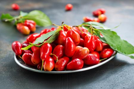 Ripe juicy berries of dogwood. Stok Fotoğraf