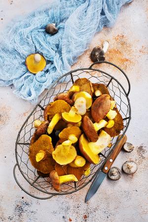 autumn mushrooms, raw mushrooms on a table, stock photo Stockfoto
