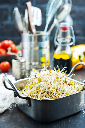 Raw fresh young organic sprouts in bowl 写真素材 - 108307057