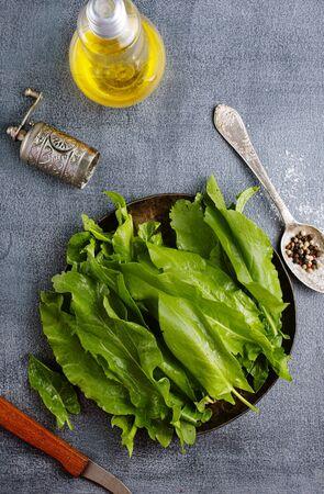fresh sorrel, green sorrel leaves on plate 版權商用圖片