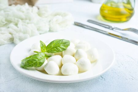 mozzarella cheese on white plate with basil Stockfoto