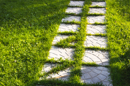 Pathway maden from paving stone in garden with beautiful lawn Stok Fotoğraf