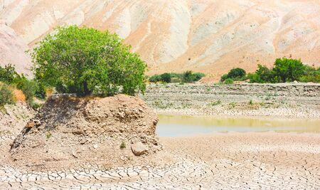 The pool of the dried lake, a lonely standing tree on a hill