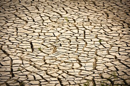 Background image of the surface of a withered lake and cracked by drought Фото со стока