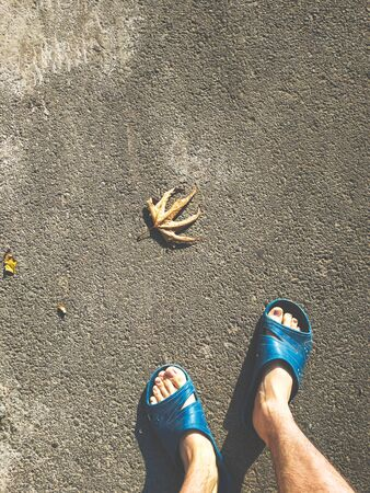 Bare male legs in blue slippers on the asphalt ground. Autumn leaf, the coming of spring