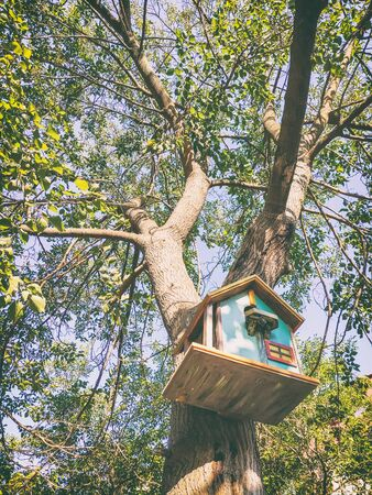 Beautiful decorated birdhouse in a park on a tree
