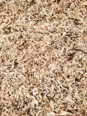 Background texture image of pieces of natural raw sheep wool