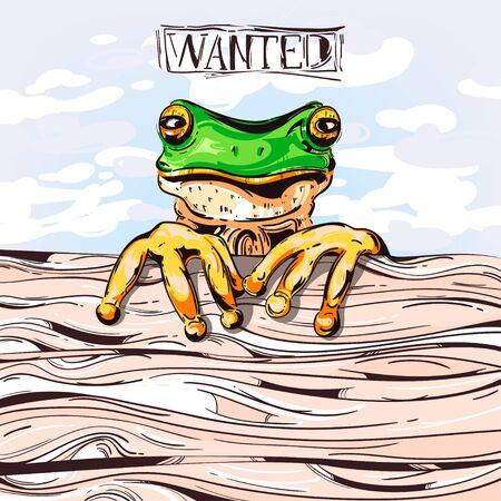 crazy frog: Crazy frog. Vector.