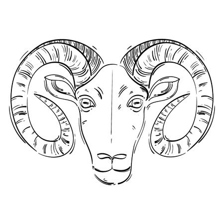 numerology: Vector abstract illustration of a ram. Aries. Horoscope. Animals.