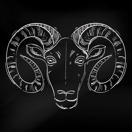 Vector abstract illustration of a ram. Aries. Horoscope. Animals. Blackboard.