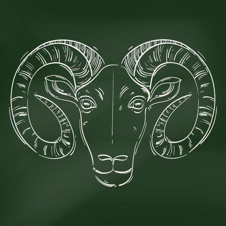 Vector abstract illustration of a ram. Aries. Horoscope. Animals. Blackboard.