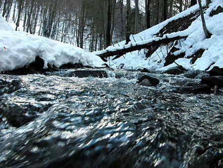 murmur: wild water amaongst the stones. Karpaty. Ukraine