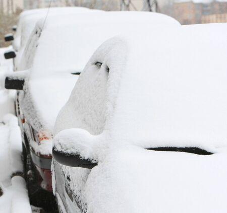 arbol de problemas: los coches cubiertos por la nieve. invierno en la ciudad