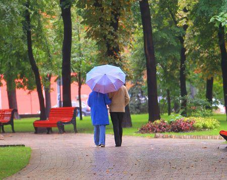 walk in: couple under umbrela walk in autumn park Stock Photo