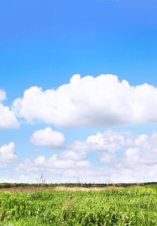 Green field against deep blue sky Stock Photo - 4717627