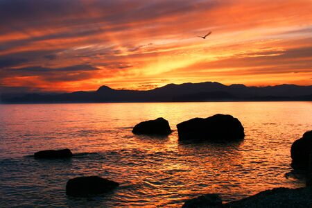 Beatifull sunset on the Crimean seashore. photo
