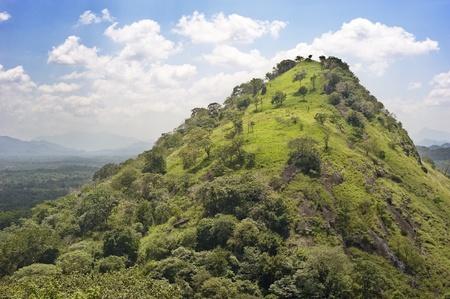Beautiful mountain in the sunshine day, Sri Lanka photo
