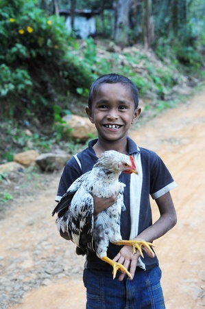 helpless: Neluwa, Sri Lanka - January 27, 2011: Sri Lankan boy from small sri lankan village carrying  chicken in his hands and looking to the camera