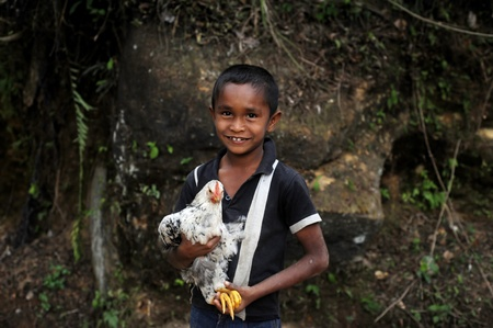 Neluwa, Sri Lanka - January 27, 2011: Sri Lankan boy from small sri lankan village carrying  chicken in his hands and looking to the camera