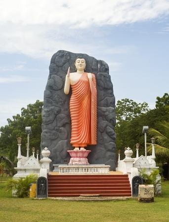 buddha sri lanka: Buddha statue in lokal temple . Sri Lanka