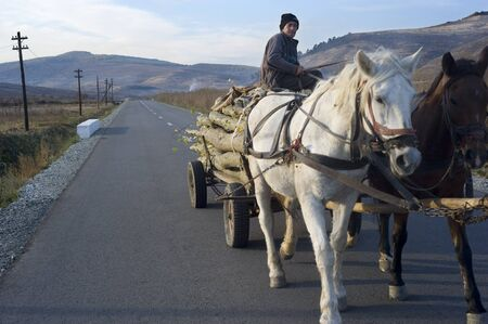 horse cart: Hateg, Romania - October 25, 2011: Man driving horse cart by the country road. Horse cart on Romanian roads are a kind of landmark. Editorial