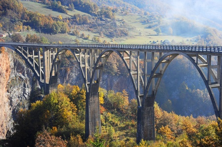 tara: Djurdjevica Tara Bridge is a concrete arch bridge over the Tara River in northern Montenegro. It was built between 1937 and 1940, its 365m long and the roadway stands 172 metres above the river.