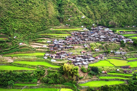asian house plants: Village in Cordillera mountains, Luzon, Philippines  Stock Photo