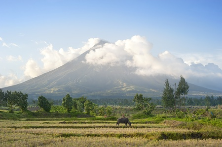 mayon: The Mayon Volcano - active volcano rising 2,462 metres,  known as the  most perfectly cone-shaped volcano.Location on  Luzon island, Philippines