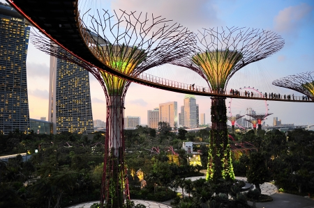 Singapore, Republic of Singapore -  March 05, 2013: People walking on the bridge at Gardens by the Bay at dusk. Gardens by the Bay was crowned World Building of the Year at the World Architecture Festival 2012