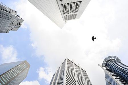 the sky clear: Pájaro que vuela beetwen los modernos rascacielos en Singapur Editorial