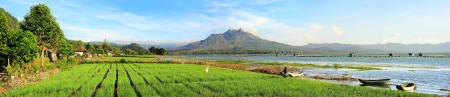 Landscape with onion fields, lake and volcano Batur at sunrise  Bali photo