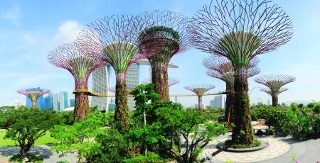 Singapore, Repubblica di Singapore - 9 maggio 2013: La gente che cammina sul ponte di Gardens by the Bay la mattina. Gardens by the Bay fu incoronato World Building of the Year al World Architecture Festival 2012